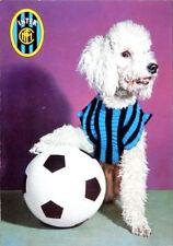 Calcio INTER -- cartolina anni 70 cane ( barboncino) con maglia INTER >> vedi!!!
