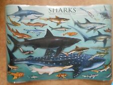 SHARK POSTER; Laminated, shows different types of sharks/ FREE SHIPPING
