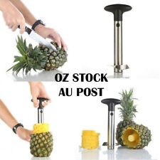 Stainless Steel Easy Kitchen Tool Fruit Pineapple Corer Slicer Cutter Peeler OZ