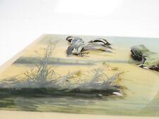 "Vicente Roso 3D Art Print Ducks nature lake Clear Resin 10.25"" x 7.75"" BC1E1218"