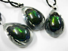 12pcs Cool Real Scarab Green Beetle Great Gifts Pendant&necklace