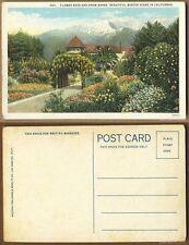 Unused Pre-1940 Postcard-#583-Flower Beds&Snow Banks,Beautiful Winter Scene,Cal.