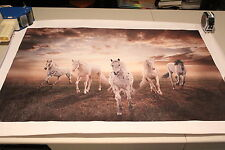 Large Horses Running Canvas Print Art 50cm x 75cm