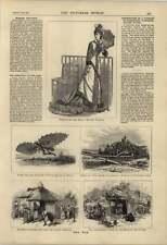 1877 Flying Machine Signor Ignazio Milan Seaside Toilette
