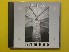 BIG BAMBOO S/T Ultra Rare Hair Metal Hard Rock Indie Seattle 1995 NM CD