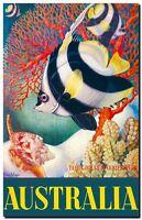 "Vintage Travel Poster CANVAS PRINT Australia Reef Fish & Coral 8""X 10"""