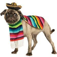 Vestiti e scarpe multicolore per cani