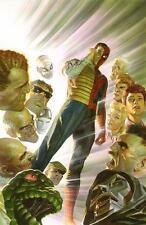 "Set Of 19 Alex Ross Spiderman 6"" x 4"" Animation Photo Prints  Marvel Spider-man"