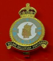 RAF Museum Royal Air Force Enamel Pin Badge No 350 Belgian Squadron