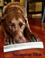 What A Deal! 1 Large Split Elk Antler Dog Chew-HARD MARROW-Free Shipping!