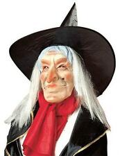 Happy Expression Witch Mask With Hat & Hair Halloween Old Woman Fancy Dress