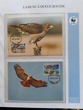WWF Maximaphilie Lot de 4 cartes-maximum OISEAU BUSE A QUEUE ROUSSE Turks&Caicos