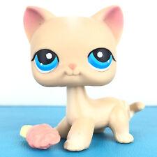 Authentic Littlest Petshop 228 Cat Short Hair Kitty Pet Shop Chat Europeen LPS,