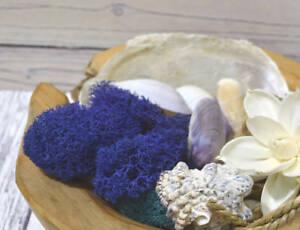 Sea Shell Pot Pourri Mix