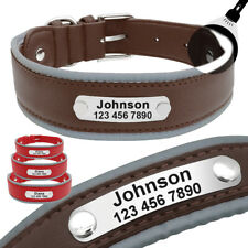 Personalized Dog Collar Engraved ID Nameplate Reflective Custom Adjustable M-XL