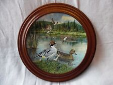 Bart Jerner decorative plate, The Pintail, limited edition #2678D, wood frame