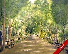 TREE LINED PARK PATHWAY LANDSCAPE PAINTING DUSHAN TAPPE ART REAL CANVAS PRINT