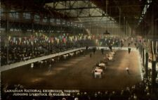Toronto Canadian National Exhibition Livestock Old Postcard