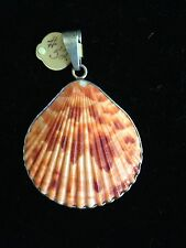Seashell And Sterling Pendant