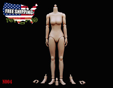 ZY TOYS 1/6 Scale MEDIUM Bust Caucasian Skin Tone Female Figure Body N004 USA