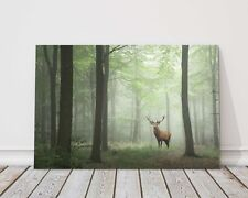 Red deer stag in Lush green forest canvas picture print foggy trees