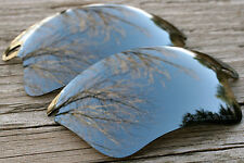 Dark Chrome Silver Polarized Replacement Sunglass Lenses for Oakley Fast Jacket