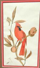 ADELINE OSGOOD RED CARDINAL BIRD ORIGINAL WATERCOLOR PAINTING