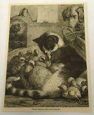 1882 magazine engraving ~ Mama Cat Adopts Ducklings