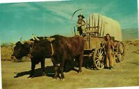 Vintage Postcard - Ox Team Covered Wagon Emigrants Pushing West Unposted  #2122