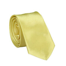 a78a7658eb0c0 24Color Solid Plain Classic 100%Polyester Silk Women Neck tie Men's Wedding