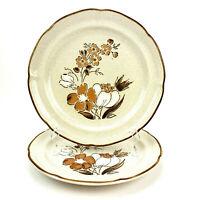 """Vintage Baroque Hearthside Dinner Plates Japan 10.5"""" Set of 2 Stoneware"""