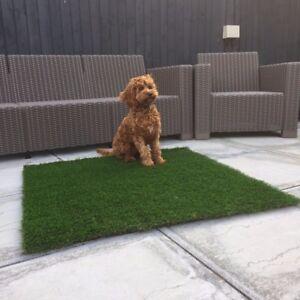 Luxury Artificial Grass Dog Mats 100cm x 100cm £20.00