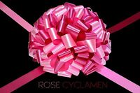 LARGE BOW MIXED COLOR FOR GIFT PRESENT 25 CM / 10 INCH CAR BOWS 8 METERS RIBBON