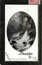Haunt of the Seamew [Sea Mew] Brooklyn NY Vintage postcard postally used in 1909