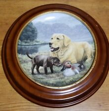 Franklin Mint First Encounter Dogs Limited Edition Porcelain Collector Plate