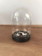 Glass Dome Bell Glass Cloche Collectors / Taxidermy Display