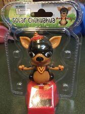 Solar Chihuahua Dog Bobble Head Big Ears Eyes Tiny Hat Dad Toy Rescue Cute