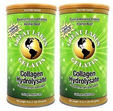 Great Lakes Gelatin Collagen Hydrolysate 16 oz Beef Kosher Pure Protein  2 Pack