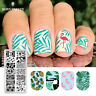 BORN PRETTY Nail Stamping Template Summer  Pattern Nail Art Stamp Plate