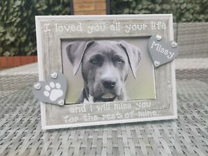 Personalised Pet Memorial Photo Frame In Grey Cat Dog In Loving Memory. Any Word