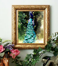 SALE Peacock Gorgeous Framed 11x13.......for horse folks and farm friends