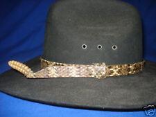 Rattlesnake Skin 3/4 hatband with rattler