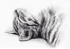 Animals Art Drawings