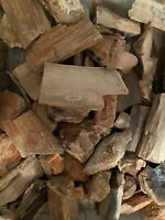 Oregon Petrified Wood Lot Rough 9 Pounds