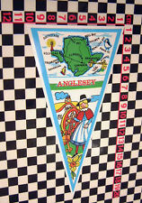 Large Anglesey Holiday Travel Glass Sticker Camper Classic Car Dormobile Caravan
