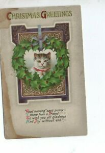 VINTAGE CHRISTMAS GREETING postcard:   PRETTY CAT & HOLLY WREATH