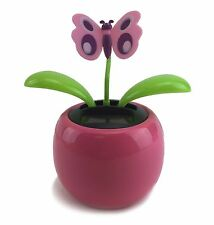 Purple Butterfly Flower Shaking Leafage in Assorted Pink Color Pot Solar Gift