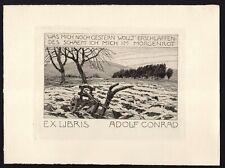 EXLIBRIS,130b - Otto Ubbelohde - Pflug auf Acker / plow on field