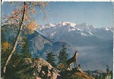 CHAMOIS, HAUTES ALPES, SWITZERLAND;  1964 USED; P/M VACANCES A VEVEY