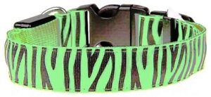 Green Zebra Striped LED Collar; Medium Fits Neck Size 15 3/4 In to 18 3/4 In